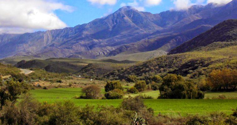 9 Tipps für einen Roadtrip auf der Garden Route in Südafrika