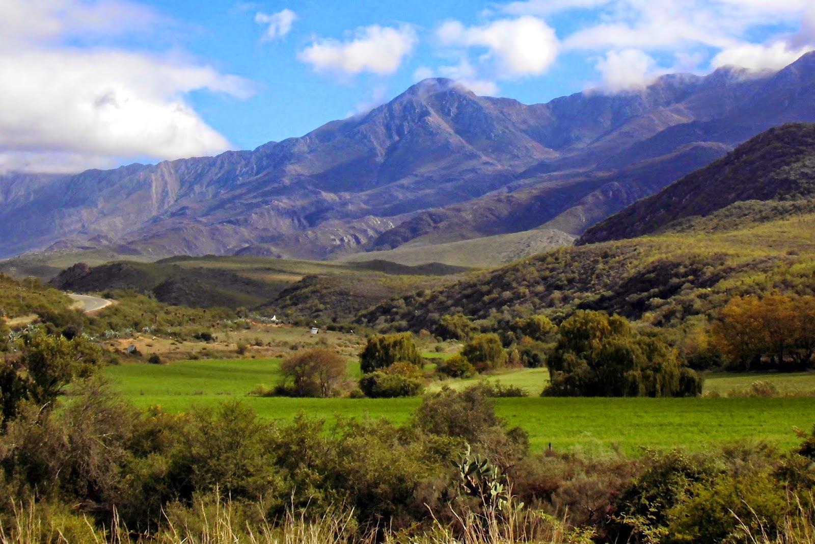 [Travel] 9 Tipps für einen Roadtrip auf der Garden Route in Südafrika