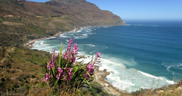 Was ich gerne gewusste hätte bevor ich nach Kapstadt gezogen bin