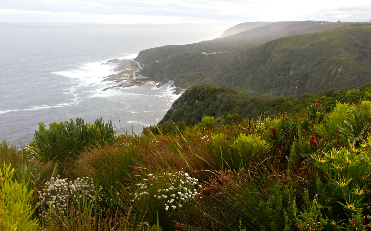 Garden Route: Tsitsikamma National Park