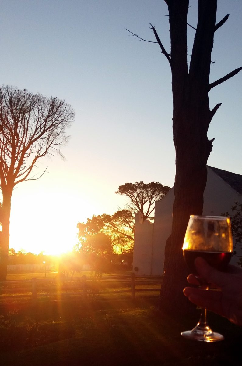 [:de]Wine Tasting in Stellenbosch (Werbung)[:en][Travel] Wine Tasting in Stellenbosch[:]