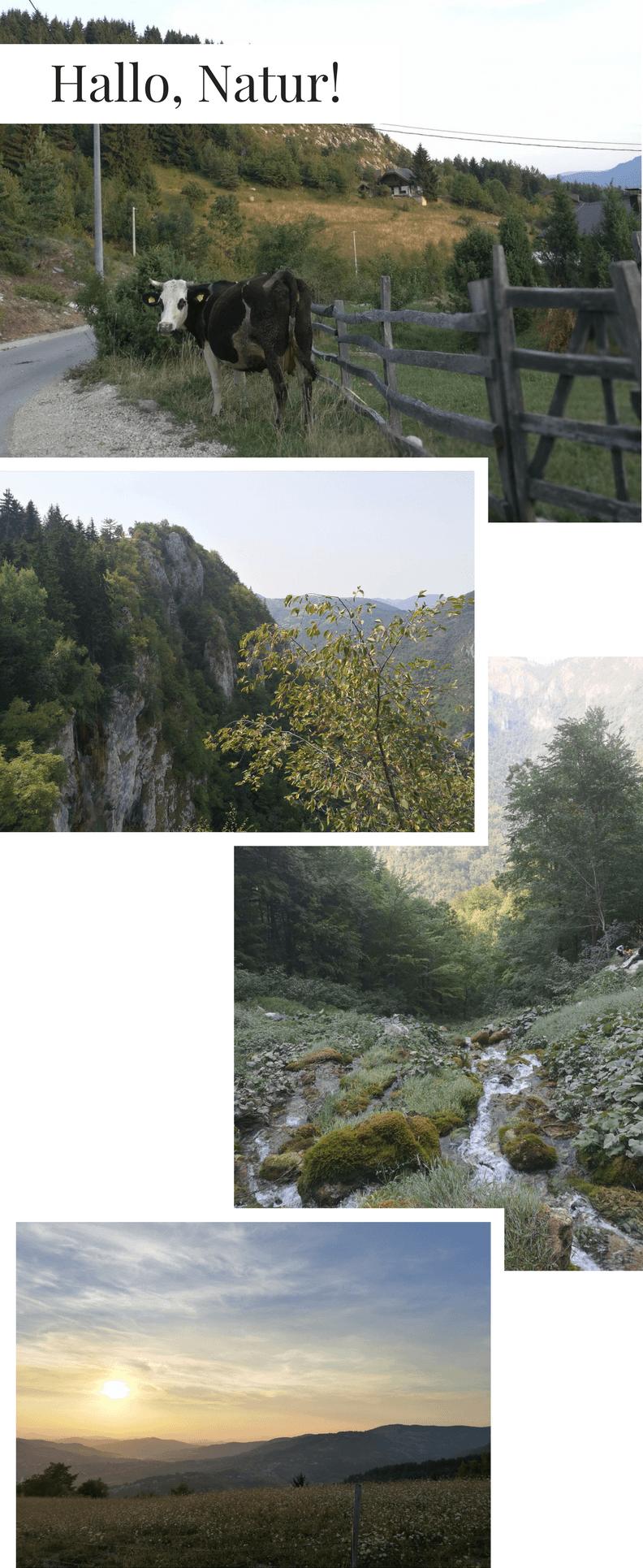 Städtereise_Sarajevo_Natur