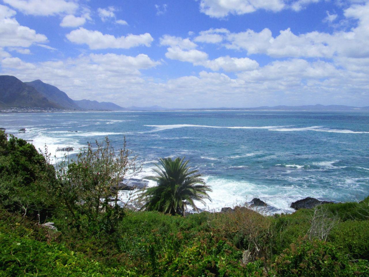 Nachhaltig_reisen_Suedafrika_Hermanus