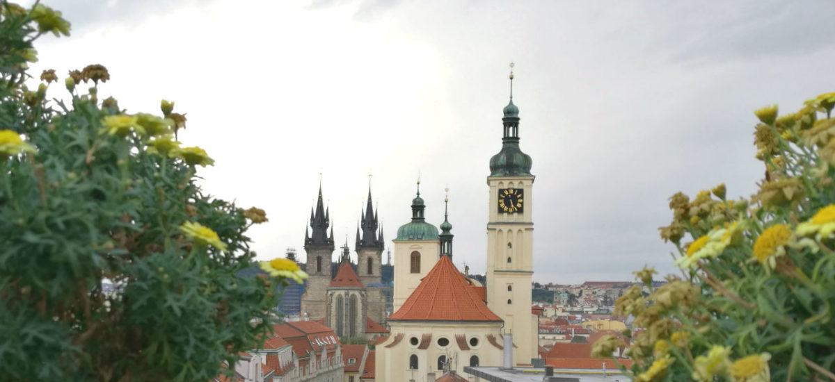 Prag kulinarisch: Insider Restaurant Tipps